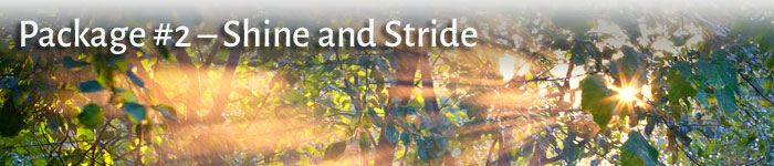 Package #2 - Shine and Stride